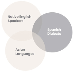 graphic of audience development attributes including native english speakers, spanish dialects and asian languages
